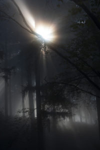 darkest dreaming #3