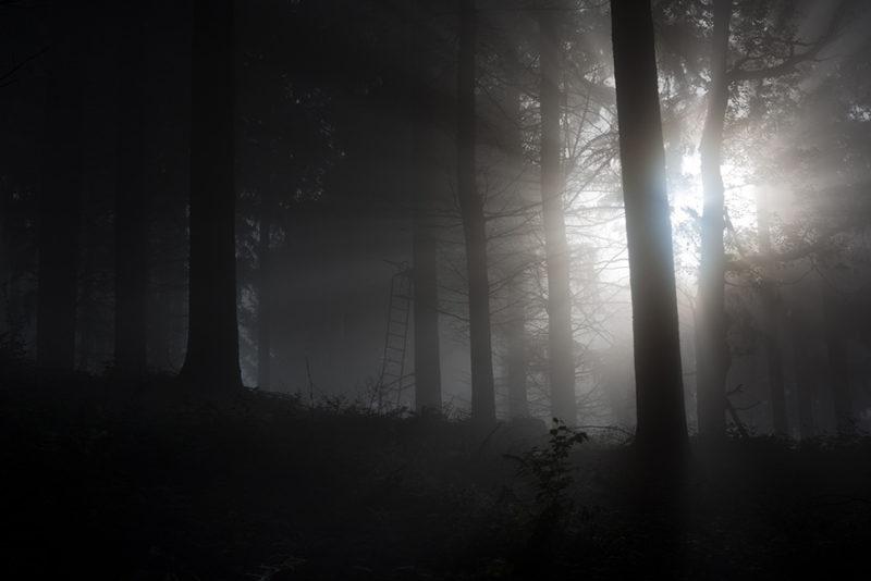 darkest dreaming #1