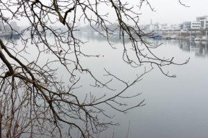 Wiesbaden Schiersteiner Hafen Boje