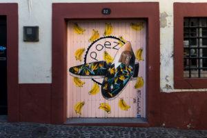 art of open door project in Rua de Santa Maria of Funchal #7