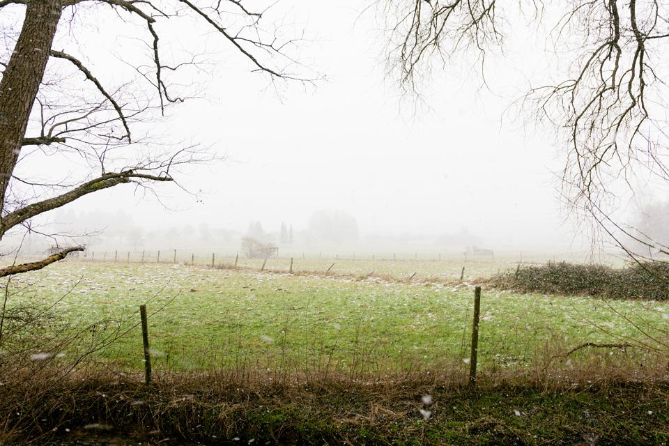 familiar environment: Daisbach bei Niederseelbach