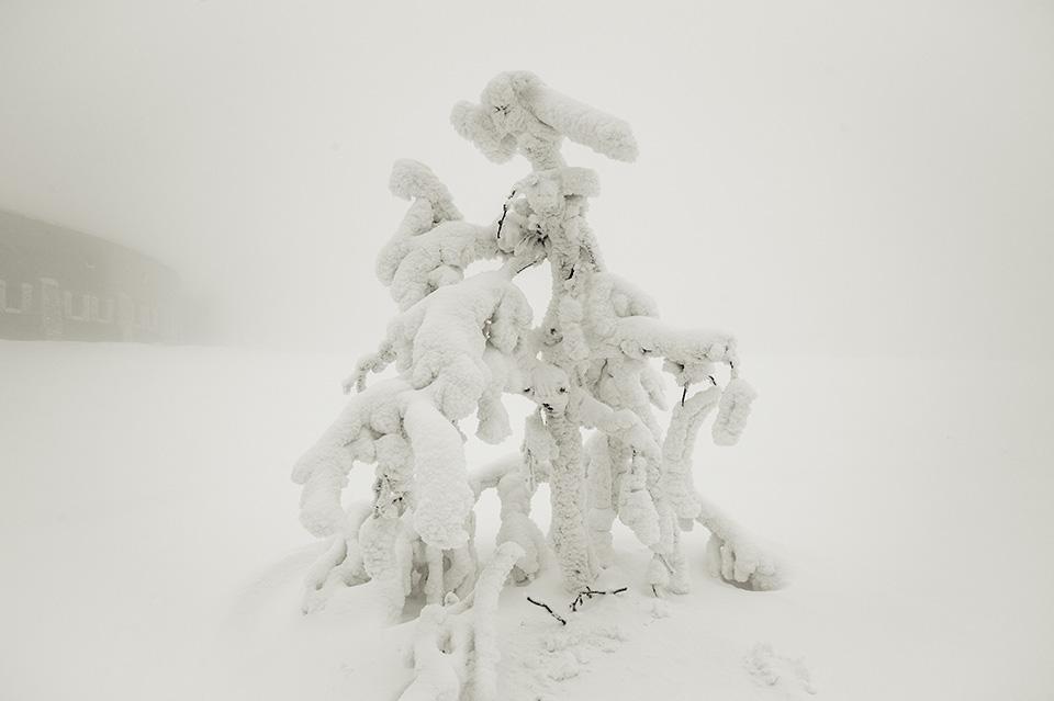 Feldberg#6 kleine Skulptur