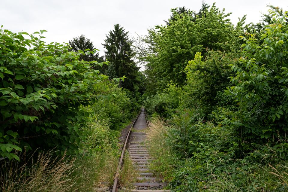 Urban Hiking #2: Traverse, Wiesbaden, Juni 2021